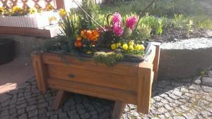 Pflanzkübel Blumenkasten aus massiv Eiche